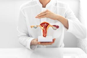 Qual a importância da consulta ginecologica e do exame fisico